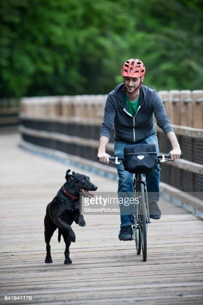 A man rides his bike in the forest with his dog on a wooden pedestrian bridge.
