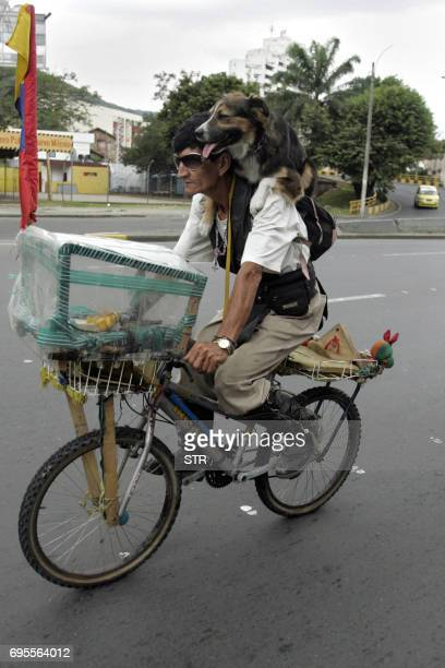 A man rides his bike with his dog during the celebrations for the World Animal Day on October 3 in Cali Valle del Cauca department Colombia AFP...