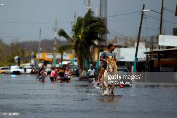 A man rides his horse on a flooded street in the aftermath of Hurricane Maria in San Juan Puerto Rico on September 22 2017 Puerto Rico battled...