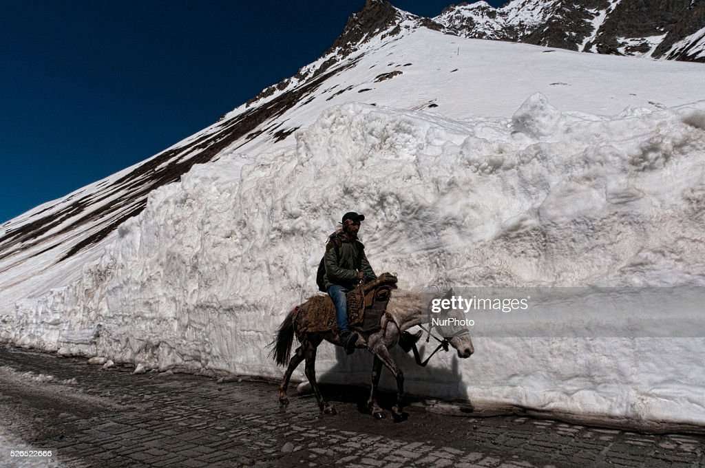 A man riding a horse passes through the snow cleared Srinagar-Leh highway in Zojila, 108 km (67 miles) east of Srinagar, the summer capital of Indian controlled Kashmir, India. on April 30, 2016. The 443 km (275 mile) long highway was opened for the season by Indian Army authorities after the remaining snow at Zojila Pass, some 3,530 metres (11,581 feet) above sea level, had been cleared. The pass connects Kashmir with the Buddhist-dominated Ladakh region, a famous tourist destination known for its monasteries, landscapes and mountains.