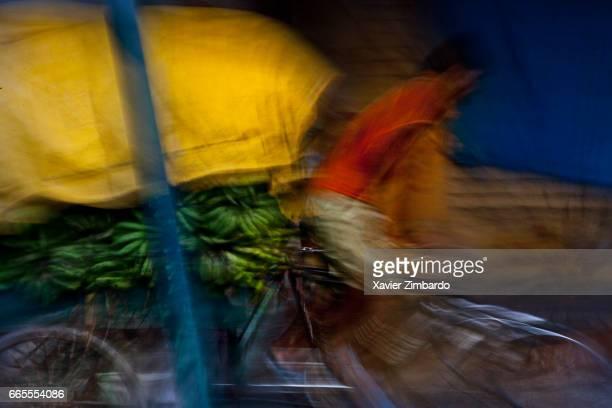 A man riding a rickshaw overloaded with fruits on October 12 2005 at Varanasi Uttar Pradesh India