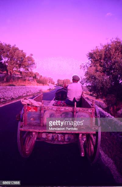 Man riding a Sicilian cart on a country road Sicily 1950s