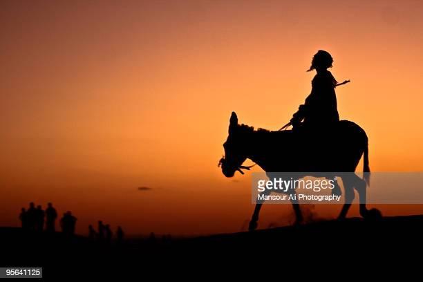 Man riding donkey in desert, silhouette