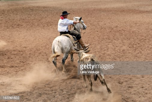 Man riding on horse : Stock-Foto