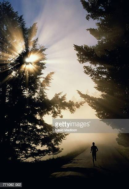 Man running on tree-lined road in early morning mist