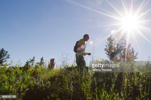 Man running with dog on beautiful sunny day