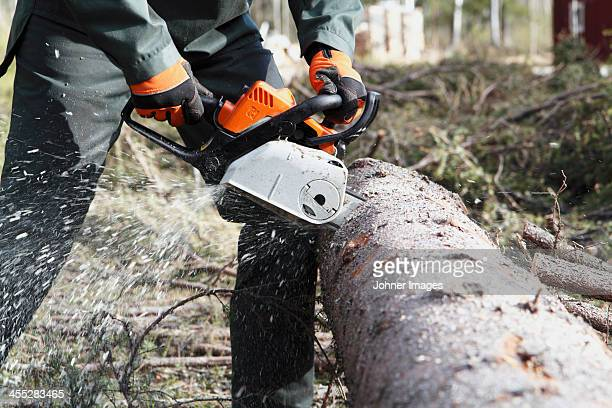 Man sawing tree