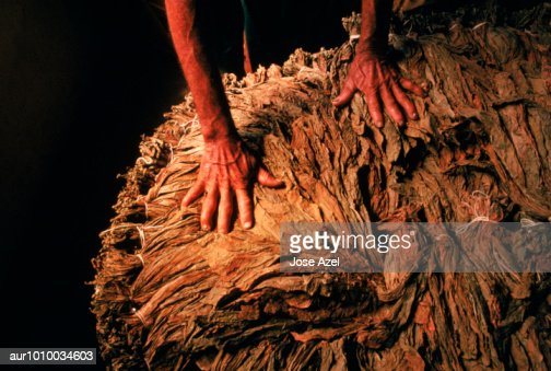 A man selects tobacco for making and packaging
