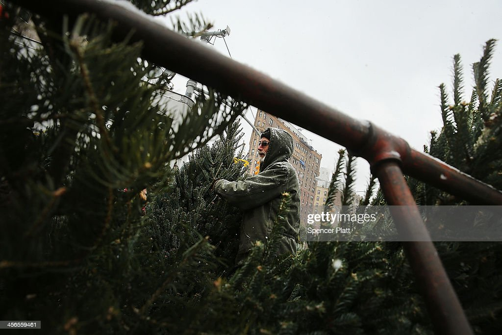 A man sells Christmas Trees during a snow storm on December 14, 2013 in the Brooklyn borough of New York City. Much of the Northeast was hit by a storm stretching over 1,000 miles that could result in at least a foot of snow on parts of New England.