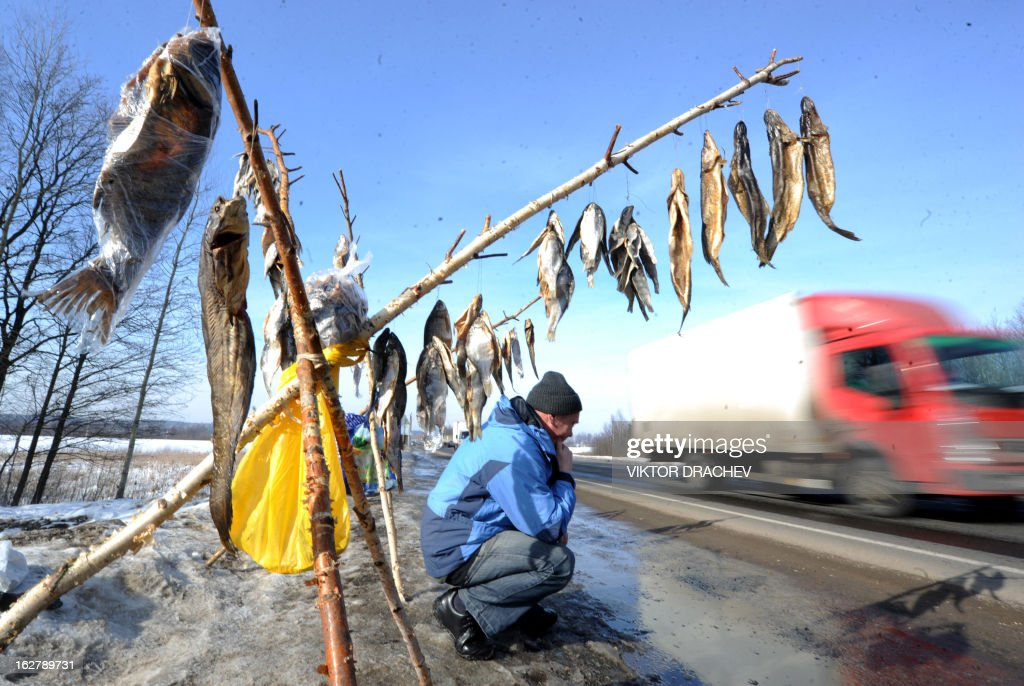 A man sells dried fish on a highway near the Belarus village of Lapichi, some 95 km south of the capital Minsk on February 27, 2013. AFP PHOTO / VIKTOR DRACHEV