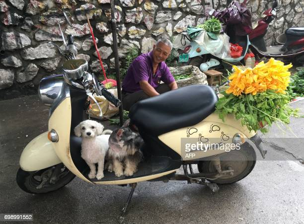 A man sits behind his pet dogs near a restaurant which serves dog meat in Yulin in China's southern Guangxi region on June 21 2017 China's most...