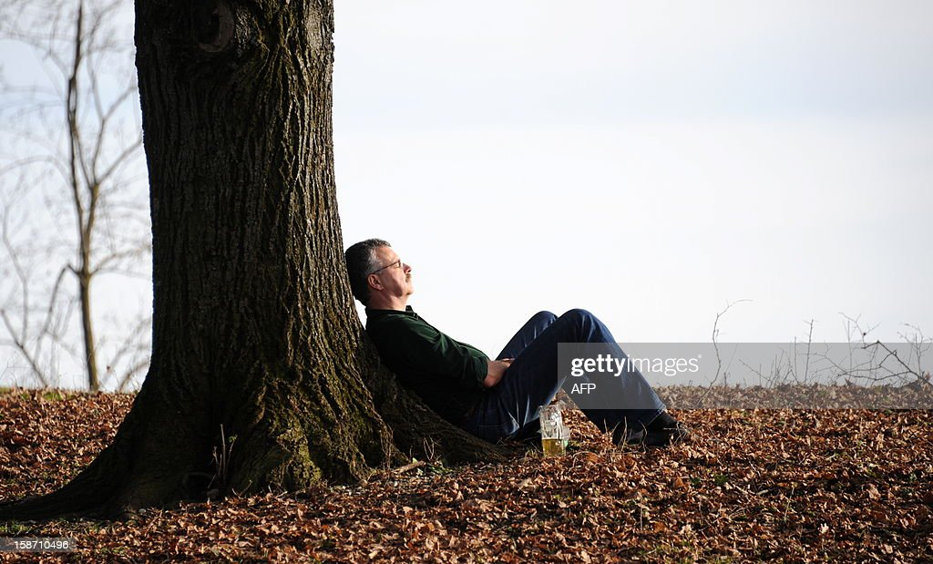 A man sits under a tree with a beer at the beer garden at the English Gardens in Munich, southern Germany where temperatures reached 20 degrees Celsius on December 25, 2012 breaking all records for this time of the year.