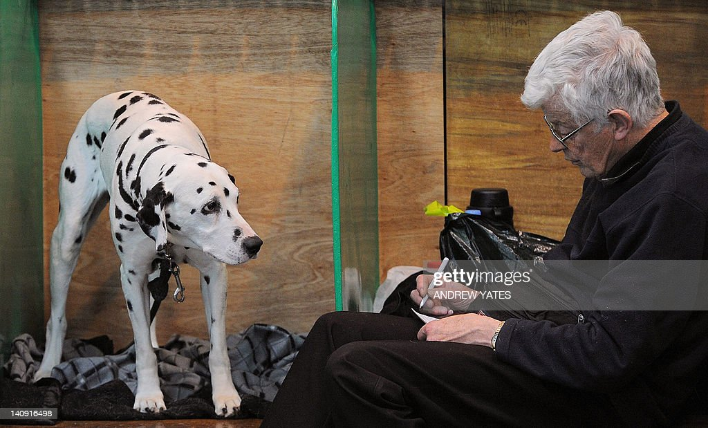 A man sits with a Dalmatian dog in the kennels on the first day of the Crufts dog show in Birmingham, central England, on March 8, 2012. The annual event sees dog breeders from around the world compete in a number of competitions with one dog going on to win the 'Best in Show' category.