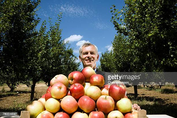 Man sitting behind pile of apples in orchard.