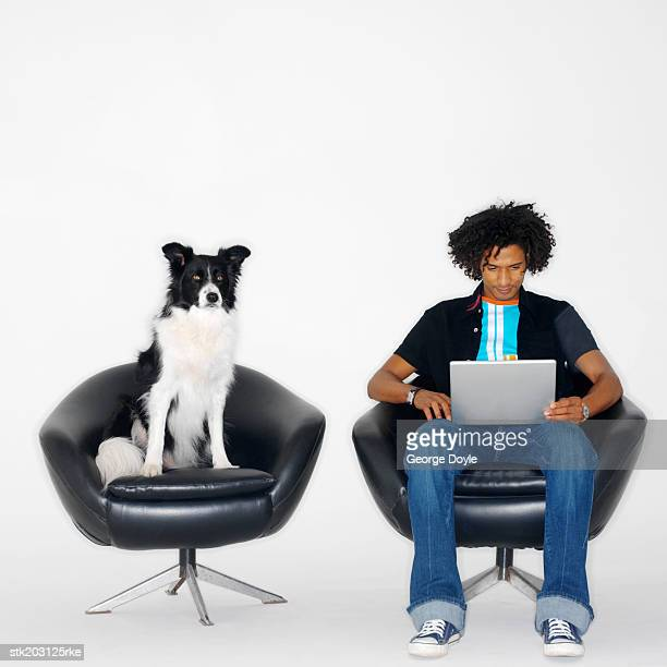 Man sitting in a chair working on a laptop and shepherd dog sitting in chair beside him