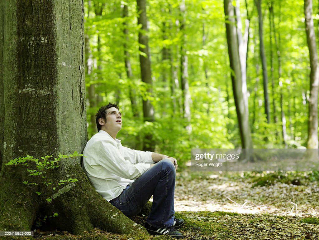 Man sitting in beech forest(Fagus sp.), looking up