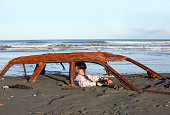 Man sits trapped in a rusted car wreck buried in sand on a New Zealand beach.