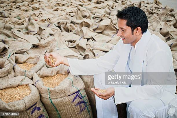 Man sitting near sacks of wheat and showing wheat grains, Anaj Mandi, Sohna, Gurgaon, Haryana, India