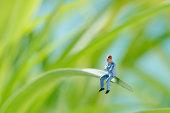 Man sitting on a green leaf
