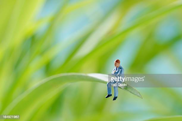 Man sitting on a green leaf