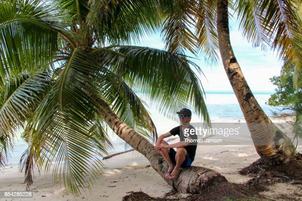 Man sitting on a palm tree on the beach
