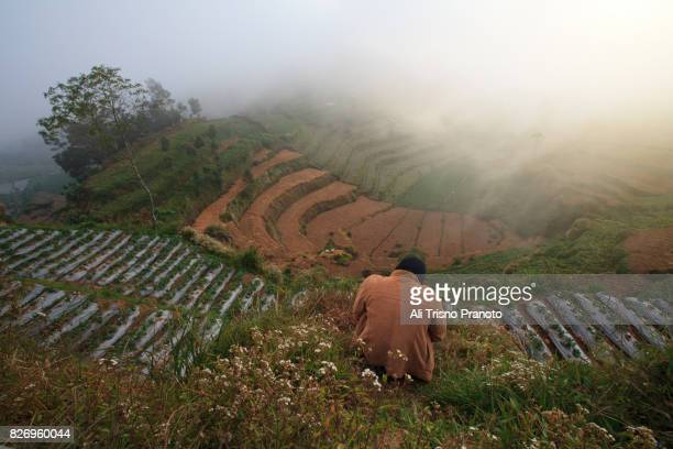 Man sitting on Dieng Plateau, Central Java, Indonesia