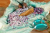 Man sitting on ground chopping onions in Langar