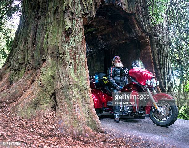 Man sitting on his motorcycle in Giant Redwood.