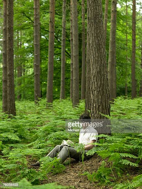 Man sitting under tree in forest, reading book