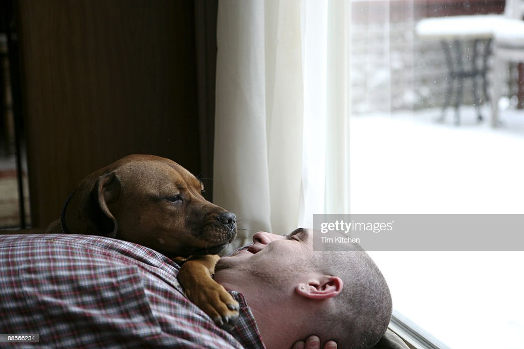 Man smiling, lying with dog by window : Stock Photo