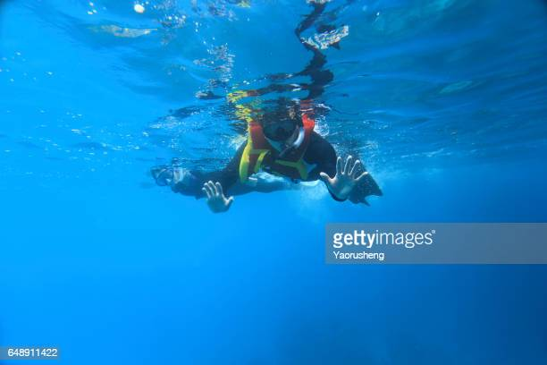 Man snorkeling in the Palau sea
