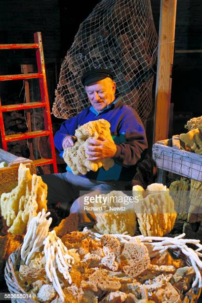 Man Sorting Sponges in Warehouse in Tarpon Springs