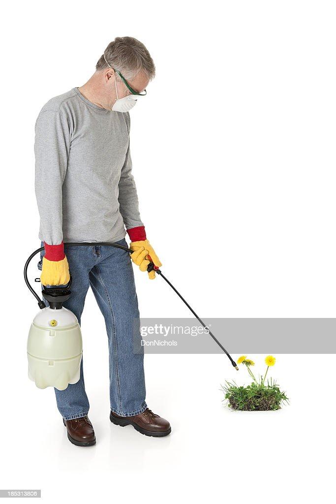 Man Spraying Weedkiller