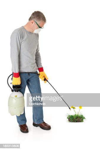 Man Spraying Weedkiller