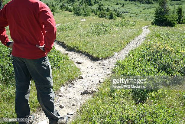 Man standing at fork in trail, rear view