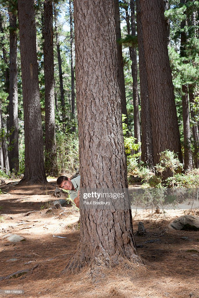 Man standing behind tree : Stock Photo