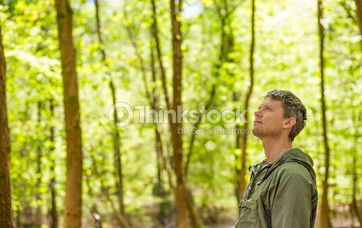 Man standing in a forest : Stock Photo