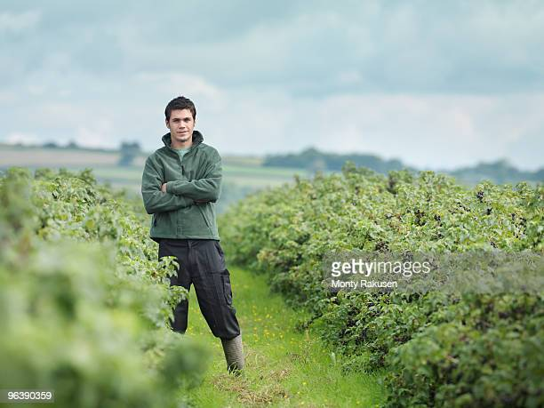 Man Standing In Field Of Blackcurrants