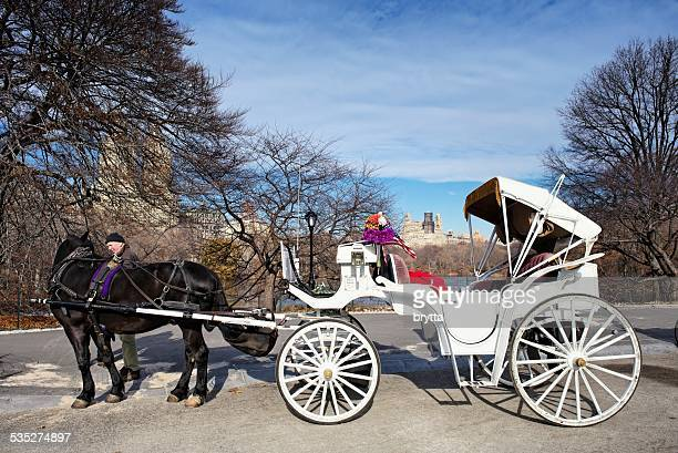Man standing near the horse carriage in Central Park