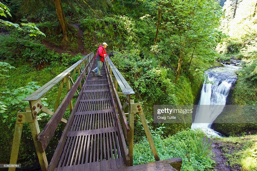 A Man Standing On A Bridge Looking At Middle Oneonta Falls In Columbia River Gorge National Scenic Area