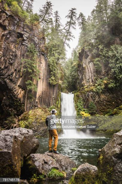 Man standing on boulder looking at Toketee Falls; Umpqua National Forest, Oregon, USA