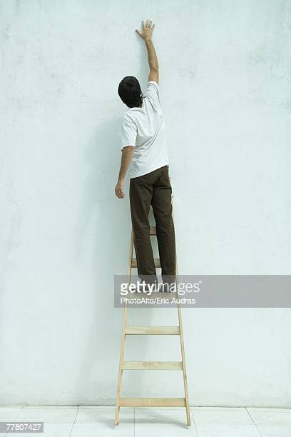 Man standing on ladder, arm raised, rear view