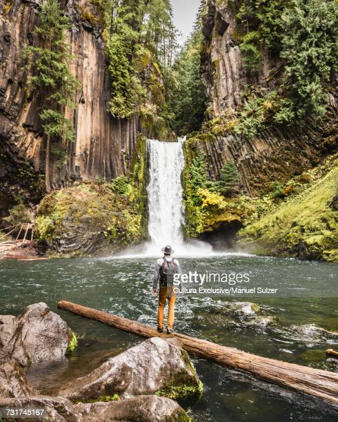 Man standing on log looking at Toketee Falls; Umpqua National Forest, Oregon, USA