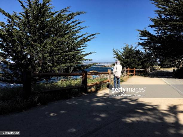 Man Standing On Roadside By Trees Growing Against Clear Blue Sky