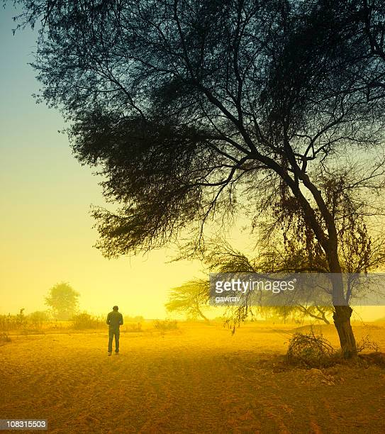 Man standing under a tree on foggy morning