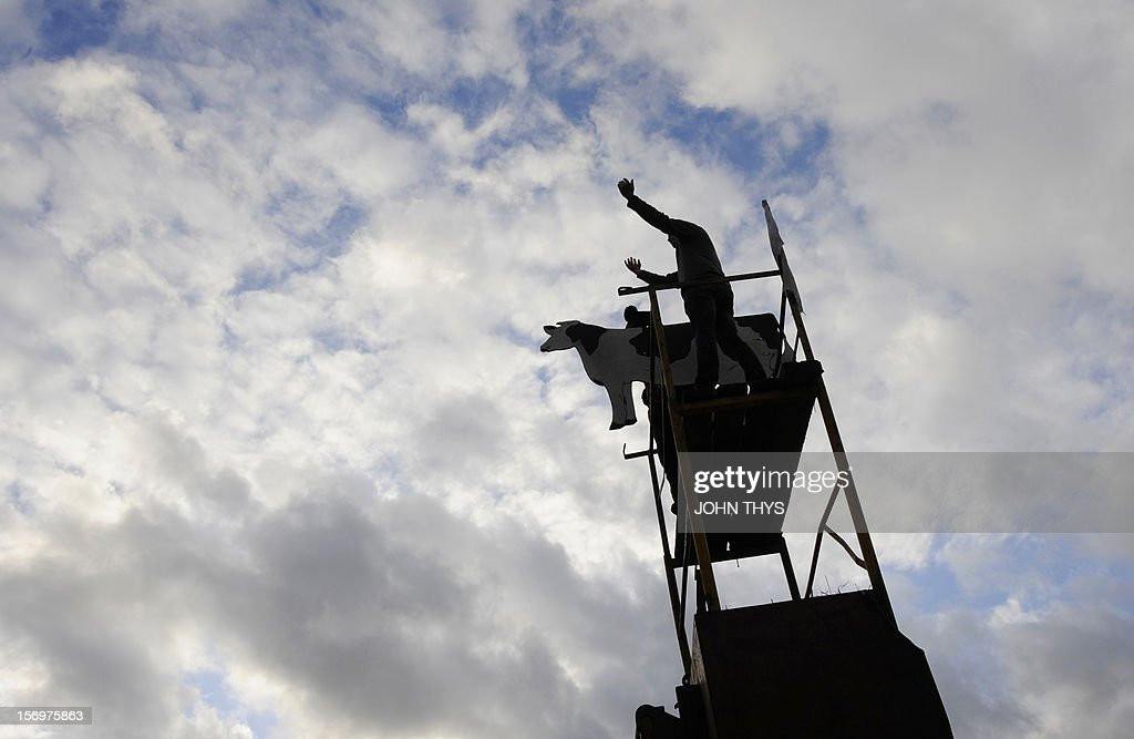 A man stands atop a makeshift structure and alongside a fake cow during a protest by dairy farmers against European Union agricultural policies, in Brussels, on November 26, 2012. Farmers demonstrated at the European Parliament in Brussels today with tractors and fake cows calling on political leaders to act on falling milk prices caused by overproduction in Europe. AFP PHOTO / JOHN THYS