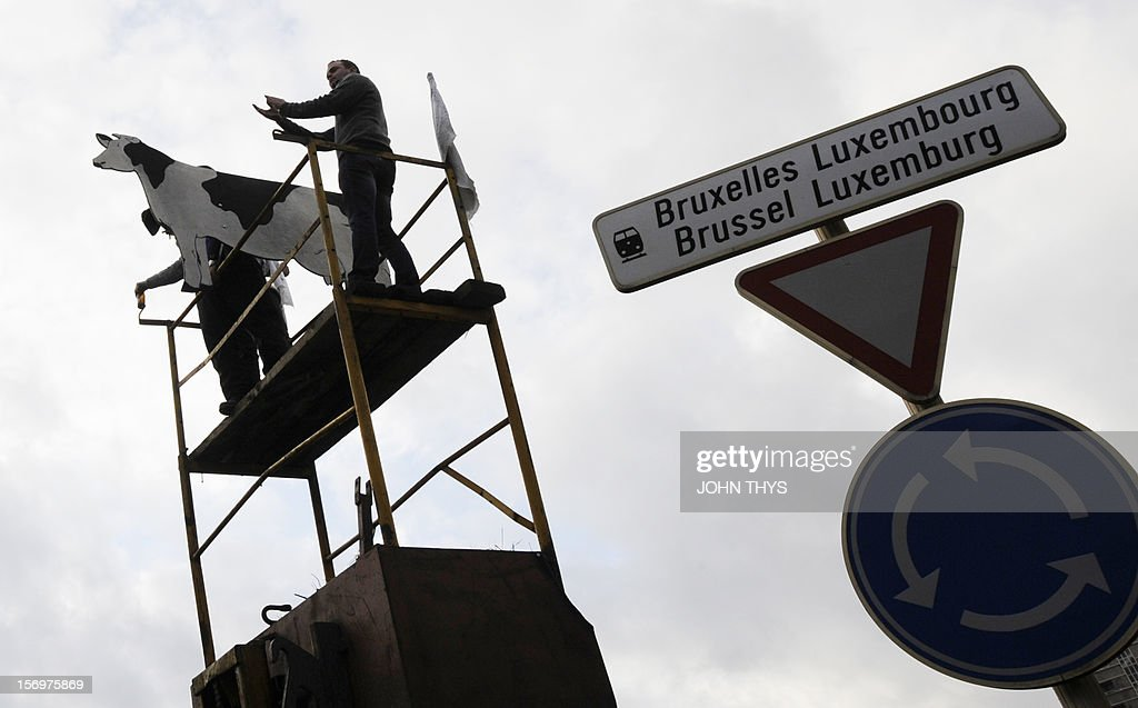 A man stands atop a makeshift structure and alongside a fake cow during a protest by dairy farmers against European Union agricultural policies, in Brussels, on November 26, 2012. Farmers demonstrated at the European Parliament in Brussels today with tractors and fake cows calling on political leaders to act on falling milk prices caused by overproduction in Europe.