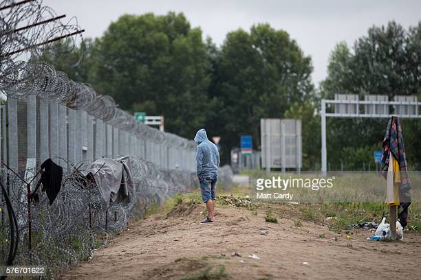 A man stands besides the border fence close to the E75 Horgas border crossing between Serbia and Hungary on July 17 2016 in Horgos Serbia Serbia has...