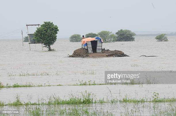 A man stranded on high land surrounded by flood water at village Arrawati after three sluice gates of the Halali dam some 55KM away from Bhopal were...