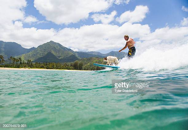 Man surfing with dog on board